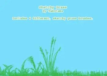 Sketchy Grass
