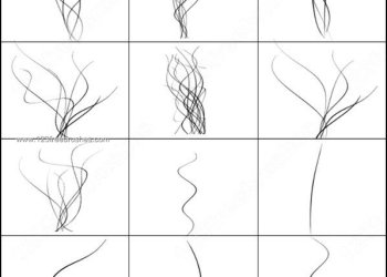Shear Curved Line Brushes Photoshop