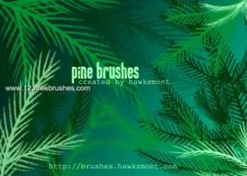 Xmas Pine Tree