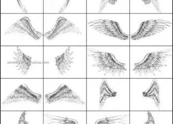 Angel Wings Brush Set