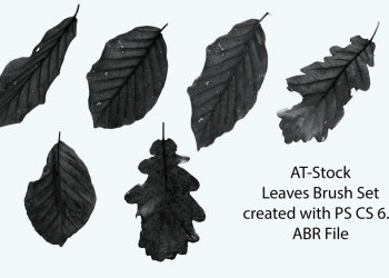 Stock-Leaves