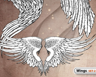Hand Drawn Wings -