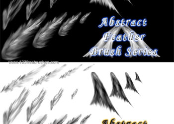 Abstract Feather