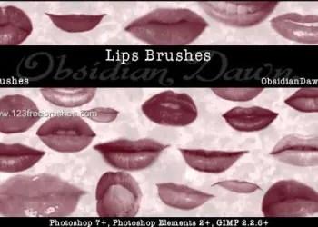 Lips – Mouth