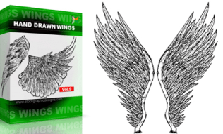Hand Drawn Wings Set.1 | Vol : 9