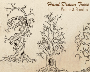 Hand Drawn Tree Vector Illustration