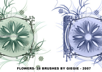 Flower Brushes For Photoshop Free Download