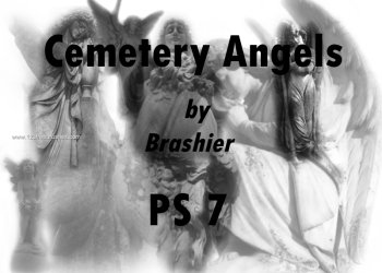 Cemetery Angels 2