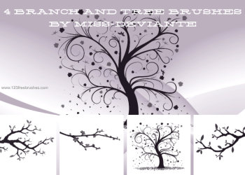 Branch and Tree
