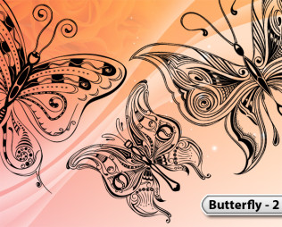 Butterfly Vector -