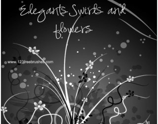 Elegant Swirls and Flowers