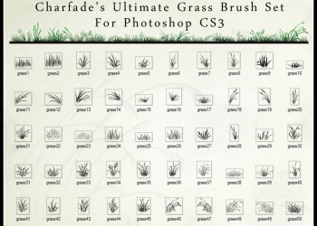 Ultimate Grass