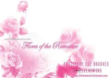 Romantic Rose Flowers