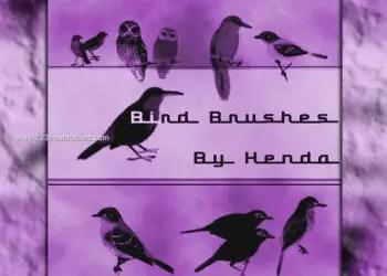 Free Bird brushes for Photoshop CS