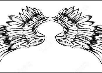 Hand Drawn Wings Photoshop Brushes