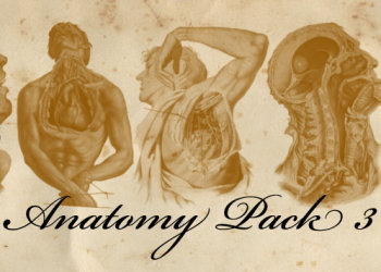 Old Anatomy