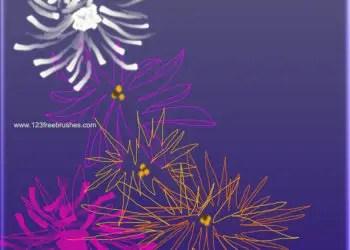Fresh Floral Designs