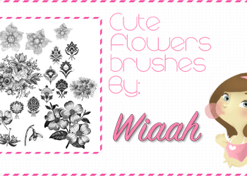 Flower Brushes For Photoshop Cs5