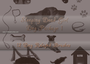 Dog Accessories Pack