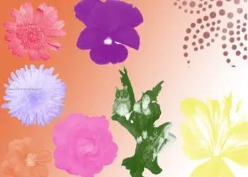 Flowers N Fairies