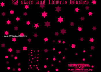 Stars and Flower