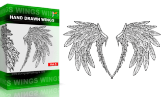 Hand Drawn Wings Set.1 | Vol : 5