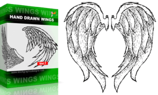 Hand Drawn Wings Set.1 | Vol : 7