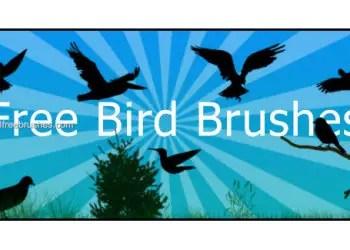 Free Bird Photoshop Brushes