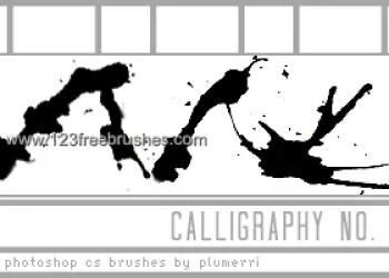 Calligraphy Ink Splatter