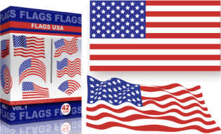 Vector USA Flags