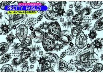 Pretty Paisley