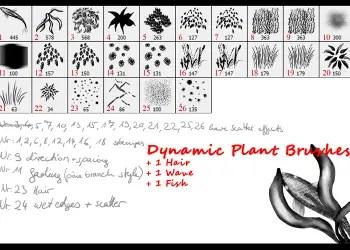 Dynamic Plant