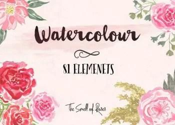 Watercolour Rose Flowers