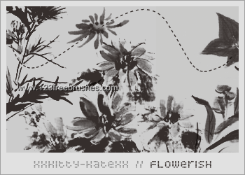 Flower Brushes In Photoshop Free Download