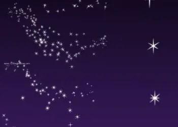 Stars 29