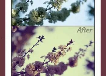 Vintage Cherry Effect Photoshop Action