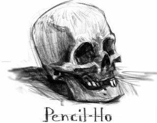 Pencil Drawing Skull