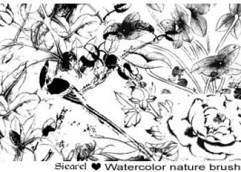 Watercolor nature