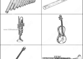 Musical Instruments – Flute – Saxophone – Guitar Brushes