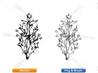 5002008-sketchy-plants-vector-and-photoshop-brush-pack-01_p007