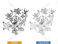 5002008-sketchy-plants-vector-and-photoshop-brush-pack-01_p012