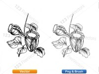 5002009-sketchy-plants-vector-and-photoshop-brush-pack-02_p004