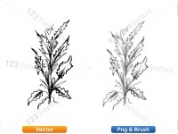 5002009-sketchy-plants-vector-and-photoshop-brush-pack-02_p008