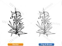 5002009-sketchy-plants-vector-and-photoshop-brush-pack-02_p010