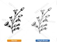 5002010-sketchy-plants-vector-and-photoshop-brush-pack-03_p009