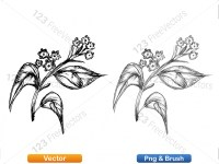 5002011-sketchy-plants-vector-and-photoshop-brush-pack-04_p009