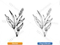 5002011-sketchy-plants-vector-and-photoshop-brush-pack-04_p012