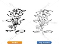 5002012-sketchy-plants-vector-and-photoshop-brush-pack-05_p003