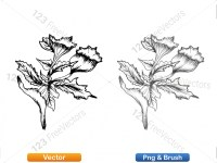 5002012-sketchy-plants-vector-and-photoshop-brush-pack-05_p007
