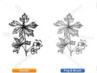 5002012-sketchy-plants-vector-and-photoshop-brush-pack-05_p008